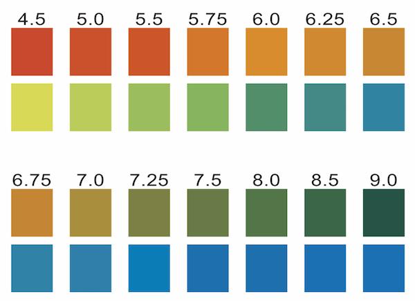 pH test strips for saliva